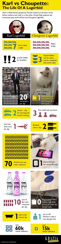 choupette-largerfeld-it-girl-modaddiction-fashion-moda-karl-largerld-modelo-trends-tendencias-infografic-infografia