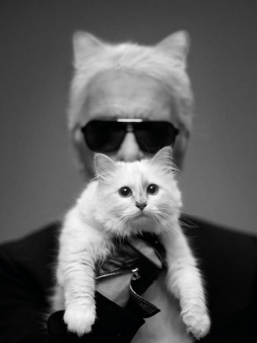 choupette-largerfeld-it-girl-modaddiction-fashion-moda-karl-largerld-modelo-trends-tendencias