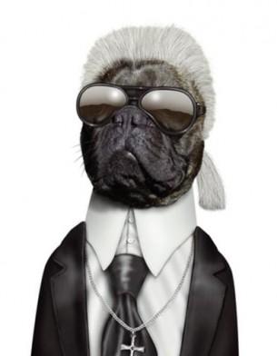 Famous-Face-takkoda-teneus-libro-book-regalo-gift-fotografia-photography-modaddiction-people-famoso-gato-perro-cat-dog-arte-art-trends-tendencias-navidad-christmas-3