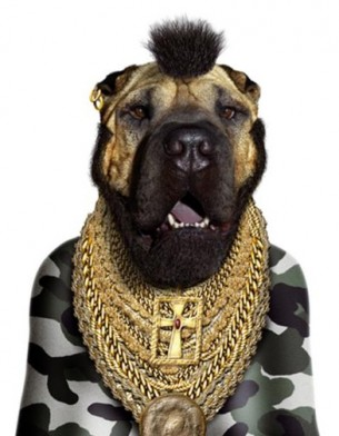 Famous-Face-takkoda-teneus-libro-book-regalo-gift-fotografia-photography-modaddiction-people-famoso-gato-perro-cat-dog-arte-art-trends-tendencias-navidad-christmas-5