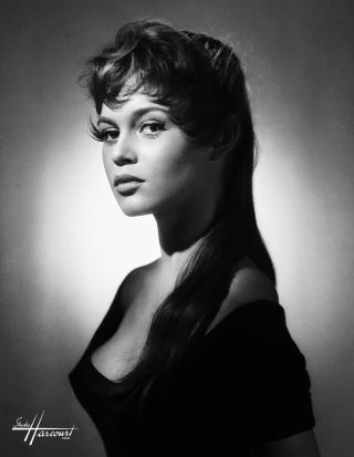 studio-harcourt-photography-fotografia-artista-artist-moda-fashion-cine-cinema-music-musica-moda-fashion-art-arte-francia-france-people-estrellas-famosos-brigitte-bardot