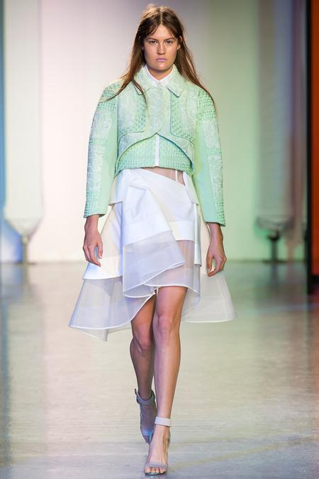 london-fashion-week-spring-summer-2014-semana-moda-londres-primavera-verano-2014-modaddiction-pasarela-desfile-runway-catwalk-peter-pilotto
